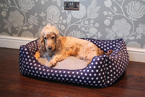 PET REBELLION- Pelíšek pro psa, Dog Bed, modrý, 90x80x25
