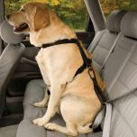 Bezpečnostný autopás pre psa s uškom Kurgo Seatbelt Tether