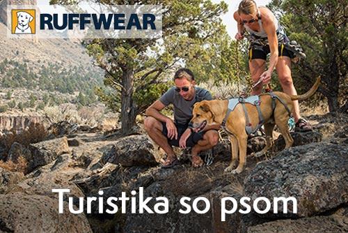 Turistika se psem - užijte si to spolu