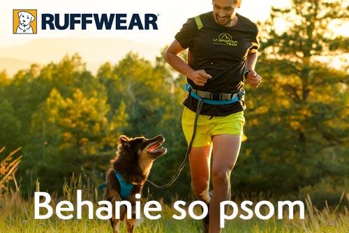 Běhání se psem - co se vám bude hodit
