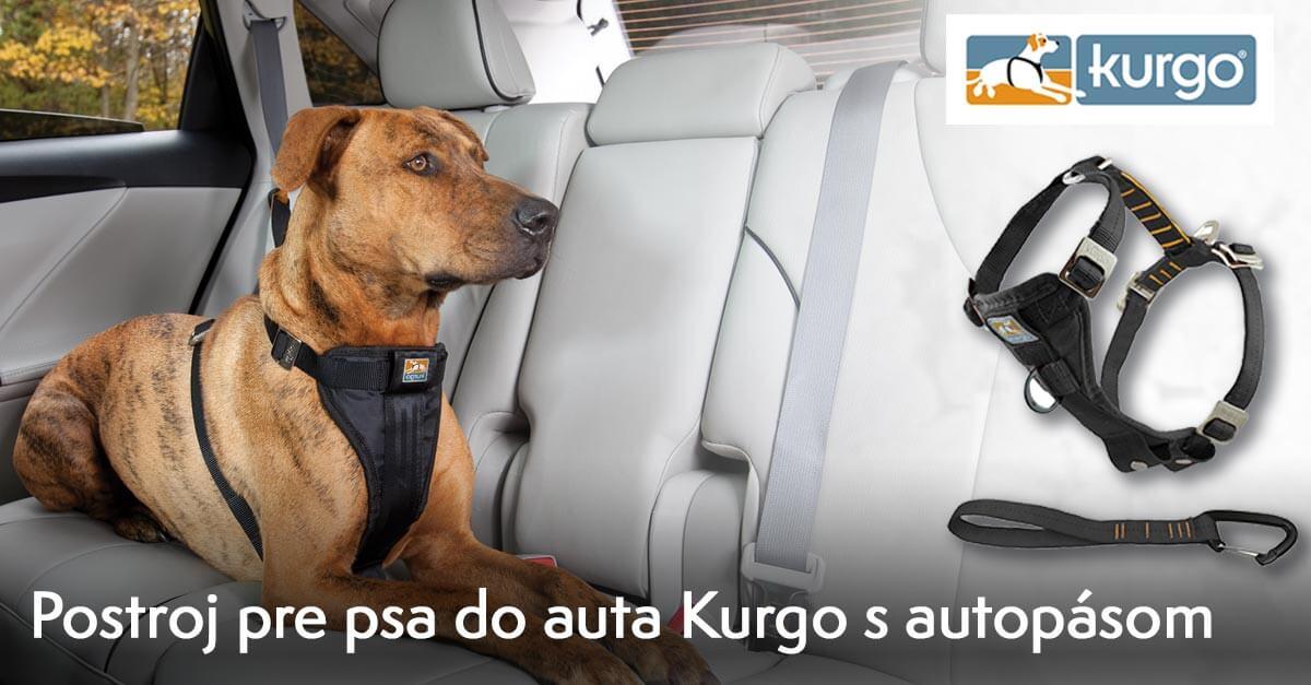 Postroj do auta Kurgo
