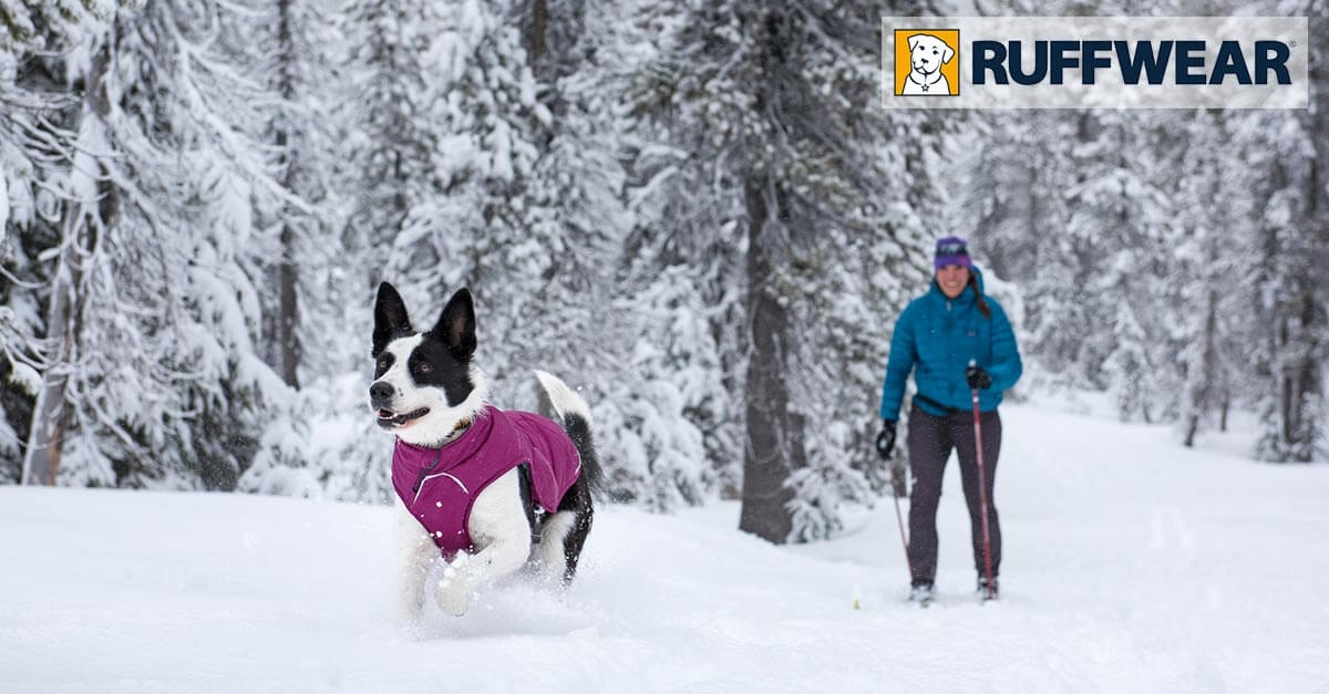 Zimná bunda pre psy Quinzee jacket