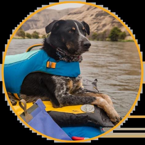 Plávacia vesta pre psy Ruffwear Float Coat™